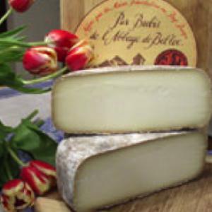 Syrah 1 Cheese Abbaye de Belloc